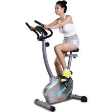 国奥 健身车家用静音动感单车BC-5100