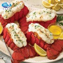 北洋海产 波士顿龙虾尾巴肉454g 加拿大野生原装进口冷冻海鲜顺丰包邮