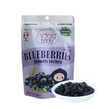 果果贝瑞蓝莓干 100g