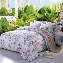 帝豪家纺 夏季全棉床单印花四件套纯棉韩式1.5m 1.8m双人被套包邮
