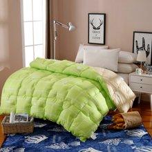 羽芯家纺羽丝绒双拼加厚保暖冬被YC860101