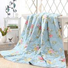 雅兰家纺 空调被夏凉被 双人春秋被冷气被 花都馨语夏被