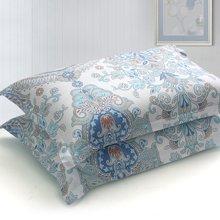帝豪家纺 全棉斜纹印花枕套 纯棉枕头套 48X72cm 枕芯套 一对装包邮