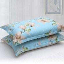 帝豪家纺 纯棉枕套 简约时尚 全棉单人枕头套 一对装 48X72cm 包邮