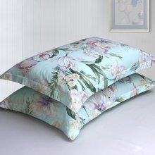 帝豪家纺 特价全棉枕套包邮一对装 纯棉成人单人枕头套