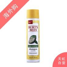 美国burts bees小蜜蜂 面包树保湿洗发水(295ml)
