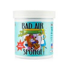 美国 Bad Air Sponge空气净化剂(400g)