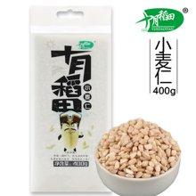 十月稻田 小麦仁400g 东北五谷杂粮 麦子 麦米 (满50元,包邮)