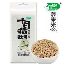 十月稻田 荞麦米400g 五谷杂粮粗粮无添加可煮粥 (满50元,包邮)