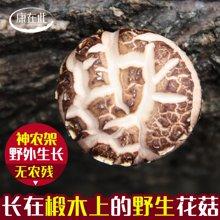 康在此 房县小花菇 椴木种植冬菇干货农家[舌尖2]推荐150g