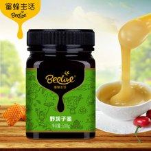 蜜蜂生活野坝子蜂蜜500g 天然0添加野生蜂蜜农家自产真蜂蜜 (包邮)