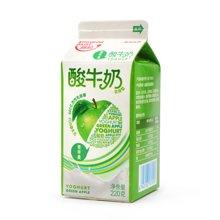 九龙维记金典苹果味酸牛奶 6盒*220ml