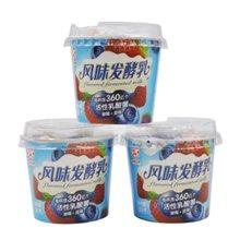 九龙维记组装草莓+蓝莓发酵乳 18杯*120g