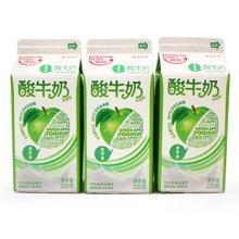 九龙维记金典苹果味酸牛奶 12盒*220ml
