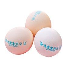 晋龙宝宝蛋  16枚装 包邮 当天现产