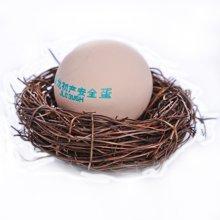 晋龙初产蛋 16枚装 包邮  当天现产现发