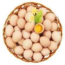 鹏昌自家农场鲜鸡蛋 20枚 产自山区自有农场 精心喂养五谷食料  24小时新鲜发货