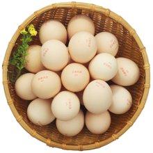 富硒鲜鸡蛋 20枚装 包邮 农场直供 产蛋24小时内新鲜发货