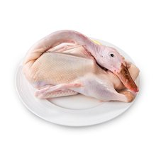 良食网 超240天野外放养的山野麻鸭,汤甜肉香、嚼劲足!