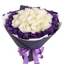 如初----19枝白玫瑰,紫色勿忘我围绕