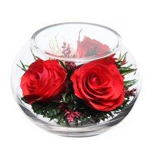 我爱你----泰国保鲜花 红玫瑰系列 送女友礼物