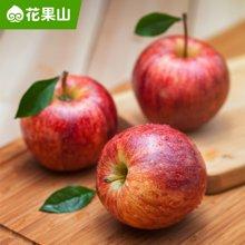 【花果山】智利进口加力果12个 新鲜嘎啦苹果