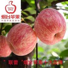 【联蕾】正宗 新季节烟台红富士苹果 脆甜多汁 包邮产地直达 80#-85#果 2.25KG