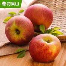 花果山 云南昭通野苹果5斤装 丑苹果 新鲜水果 产地直发