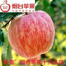 【联蕾】正宗山东烟台红富士苹果  脆甜可口 营养丰富 产地直发  80# 4KG装