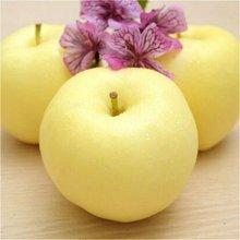 【联蕾 】 黄金富士苹果  自有基地有机种植  完熟品种 糖度高 80# 2.25KG装