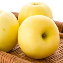 联蕾食品新鲜水果正宗烟台苹果黄金帅粉面香蕉黄元帅新鲜水果非红富士4.5斤包邮
