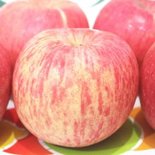 【联蕾】正宗山东烟台红富士苹果 脆甜可口 营养丰富 产地直发 75# 2.25KG装