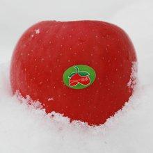 蒂农果品新鲜静宁红富士苹果9头85mm果净重约2.5kg包邮