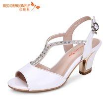 红蜻蜓女凉鞋 夏款时尚水钻搭扣高跟鱼嘴粗跟凉鞋5087