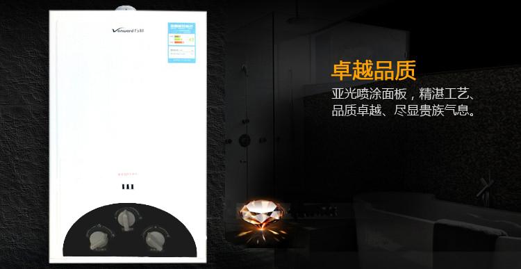 5c12强排式燃气热水器新亚光-气