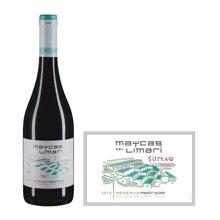 智利麦卡斯珍藏黑皮诺红葡萄酒 2015年