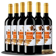 限时试饮 澳洲原瓶进口红酒 魔幻葡叶色拉子红葡萄酒 750ml 六支整箱 聚会宴席佳选