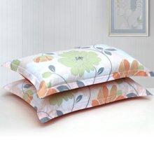 帝豪家纺 全棉斜纹印花枕套 纯棉枕头套 枕芯套 一对装