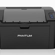 奔图 P2505N 打印机(1台)