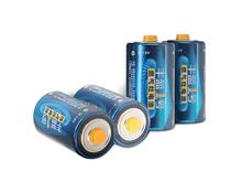 南孚丰蓝1号电池大号D型燃气灶干电池2节   套装两卡4节   R20P-2B