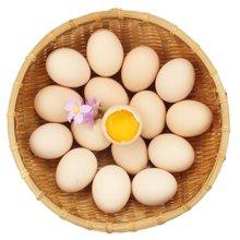 """【中秋领券满减】初产鲜鸡蛋 15枚 只发当日鲜蛋  精选130-160天期间产的鸡蛋 俗称""""初生蛋""""  安全新鲜味美 中秋礼盒"""