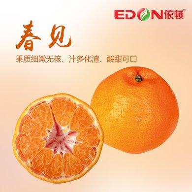 春见柑橘果子多少一斤