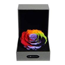 经典七彩----七彩永生玫瑰:厄瓜多尔进口巨型玫瑰