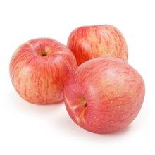 【联蕾】 正宗新季节烟台红富士苹果  脆甜多汁 包邮产地直达 80#-85#果 2.25KG