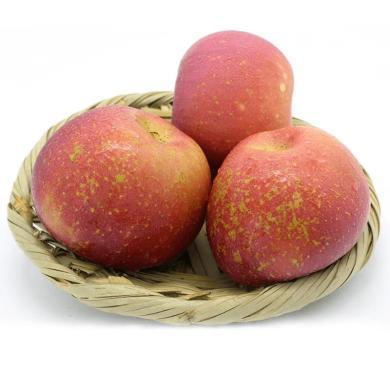 華樸上品 昭通水果丑蘋果5斤裝大果 80-85mm 應季蘋果