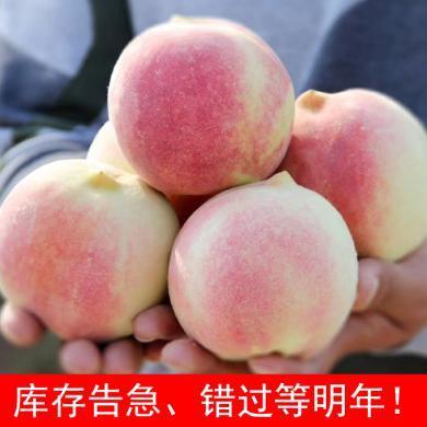 【顺丰包邮】华朴上品 山东金秋红蜜桃子 4.5-5斤装 8-12粒 新鲜水果桃子