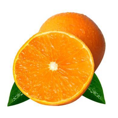 華樸上品 四川眉山 愛媛橙子5斤大果 9-12個 新鮮水果橙子