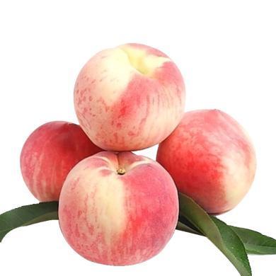 【顺丰包邮】华朴上品 山东映霜红桃子 4.5-5斤装 8-12粒 新鲜水果桃子