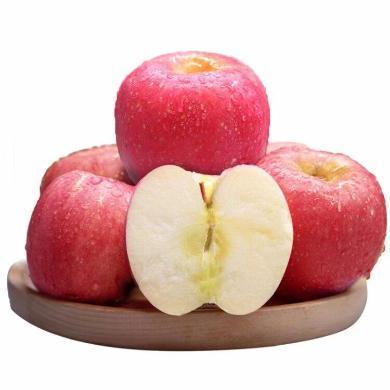 【顺丰包邮】 山西万荣红富士 新鲜苹果18枚8.5斤 中果