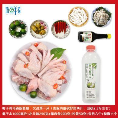 海南特產文昌雞珍珠馬蹄椰子雞套餐荸薺椰肉火鍋土雞散養雞送人禮品